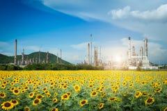 Rafinerii Ropy Naftowej fabryka w ranku, zakład petrochemiczny, ropa naftowa obrazy stock