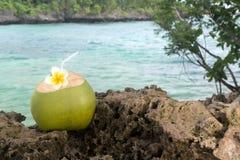 Rafraîchissement tropical de noix de coco photos stock