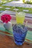 Rafrescamentos ervais da bebida do gelo colorido no jardim Fotos de Stock
