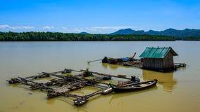 Raft freshwater fish Stock Photo