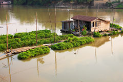Raft resident. Houseboat in the river and pine plot, Thailand stock images