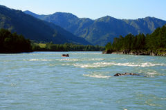 rafting ποταμός βουνών Στοκ Εικόνες