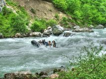 Rafting. On the river Lim in Montenegro stock images