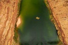 Rafting dell'acqua bianca sul fiume Colorado immagini stock libere da diritti