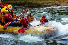 Rafting di Whitewater sul fiume di Kaituna immagini stock
