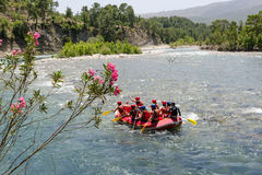 Rafting. Group rafting is floating down the river Royalty Free Stock Photography