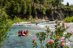 Rafting. Group rafting is floating down the river Royalty Free Stock Photos