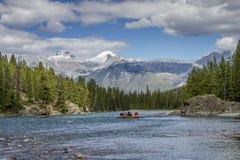 Rafting på en bergflod - Jasper National Park, Kanada Royaltyfri Foto