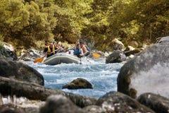 Rafting på Tara River royaltyfria bilder