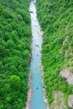 Rafting on the river Tara in Montenegro. View to the river Tara and rafters in the canyon (Montenegro, Europe Stock Image