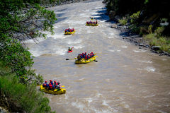 Rafting the river. Team playing rafting the river Stock Images