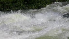 Rafting in rough waters the White Nile stock video