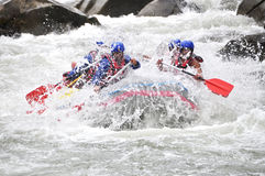 Rafting, splashing the white water Stock Photography