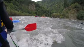 Rafting team floating down river with paddles ready, dangerous extreme sports. Stock footage stock footage