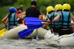 Rafting. Water sport, rafting, team fused the mountain river Royalty Free Stock Photos