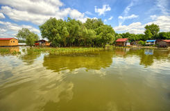 Rafts and tree on a green lake royalty free stock photos