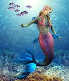 Rafy Koralowa syrenka ilustracja wektor