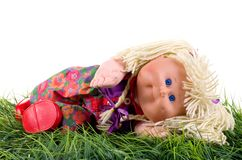 Rag doll. Rag doll is lying on the grass on her left side of body. Studio shot on a white background Royalty Free Stock Photo