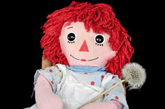 Rag doll with fluffy dandelion Stock Photos