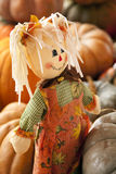 Rag Doll Thanksgiving Halloween Autumn Stock Photography
