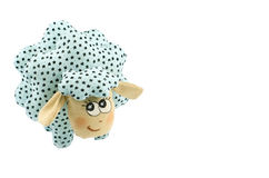 Rag-doll turquoise speckled lamb Stock Image