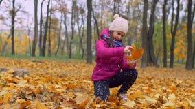 Ragazza adorabile che sistema mazzo delle foglie di autunno archivi video