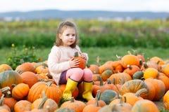 Ragazza adorabile del bambino divertendosi sulla toppa della zucca Fotografia Stock Libera da Diritti