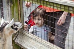 Ragazza al giardino zoologico Immagine Stock