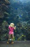 Ragazza al vetro dell'acquario Fotografia Stock