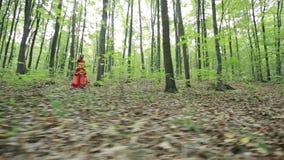 Ragazza alla moda romantica nella foresta stock footage