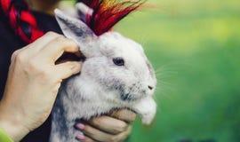 Ragazza asiatica graziosa che abbraccia coniglietto sulla natura di estate fotografia stock