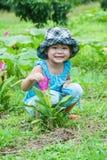 Ragazza asiatica sveglia con i tulipani del Siam che fioriscono nel giardino Fotografia Stock Libera da Diritti