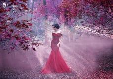 Ragazza attraente in un vestito rosa immagini stock