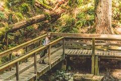 Ragazza a Baden Powell Trail vicino alla roccia della cava a Vancouver del nord, fotografia stock libera da diritti