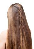 Ragazza ben curato e bella dei capelli parzialmente intrecciata in treccia Isolato su priorità bassa bianca fotografia stock libera da diritti