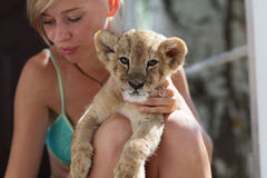 Ragazza bionda che tiene il piccolo cucciolo di leone Fotografie Stock Libere da Diritti