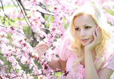 Ragazza bionda con Cherry Blossom. Ritratto della primavera. Bello Immagine Stock Libera da Diritti