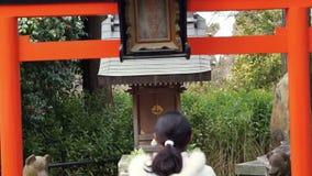 Ragazza buddista che prega al tempio giapponese stock footage