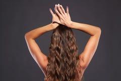 Ragazza in buona salute dei capelli Immagine Stock Libera da Diritti