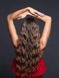 Ragazza in buona salute dei capelli Immagini Stock Libere da Diritti