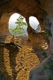 ragazza calcolata caverna Fotografia Stock Libera da Diritti