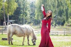 Ragazza castana e cavallo immagine stock libera da diritti