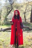 Ragazza castana in un impermeabile rosso fotografia stock