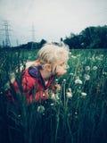 Ragazza caucasica che cammina fra i denti di leone e l'erba sul prato alla sera fotografie stock libere da diritti