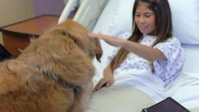 Ragazza che è visitata nell'ospedale dal cane di terapia archivi video