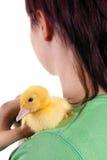 Abbracciare un anatroccolo di pasqua Immagine Stock