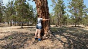 Ragazza che abbraccia un grande albero stock footage