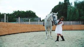 Ragazza che accarezza e che gioca con il suo cavallo bianco sull'area 4K archivi video