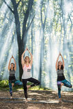 Ragazza che allunga esercizio di yoga in natura calma Immagini Stock