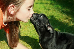 Ragazza che bacia cane Fotografie Stock Libere da Diritti